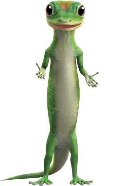 0318p40-geico-gecko